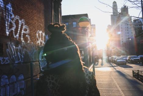 2018.New.York.30